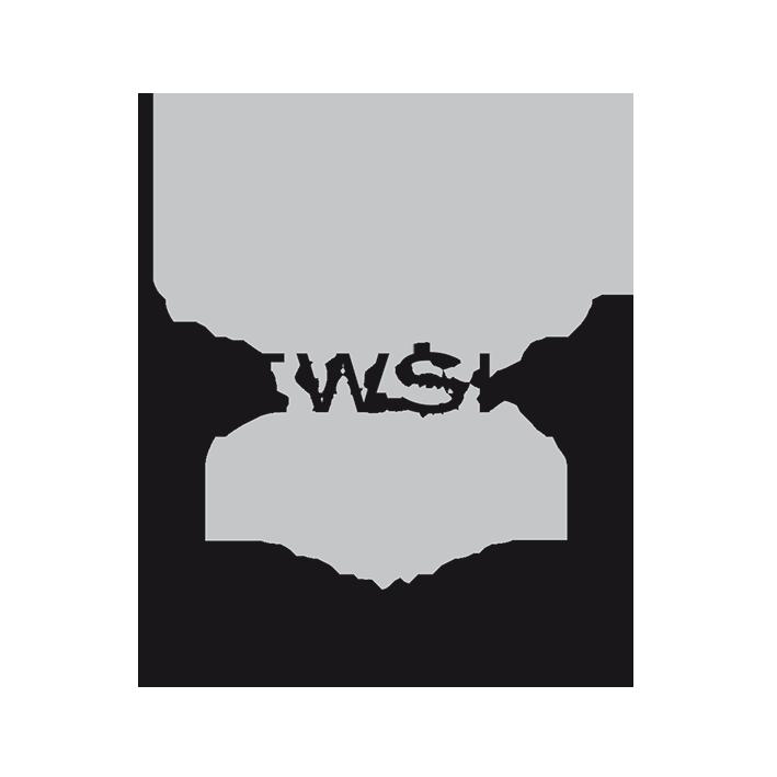 partner Partner NEWSHA Logo sw