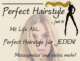 Perfect Hairstyle Beautymesse Blog     Perfect Hairstyle 1 80x61